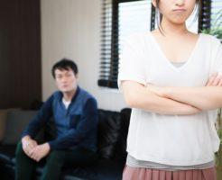 主人在宅ストレス症候群が楽になる